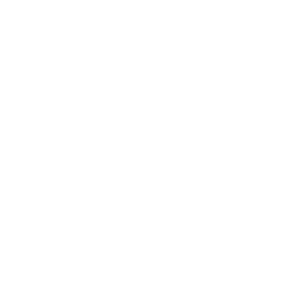gsmReview